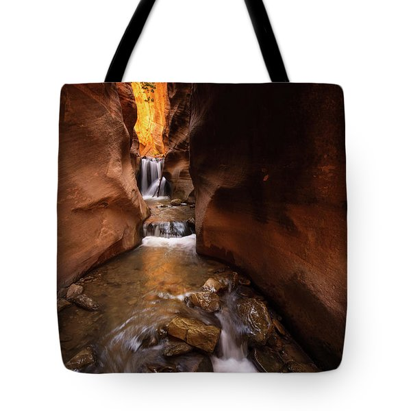 Tote Bag featuring the photograph Beloved by Dustin LeFevre