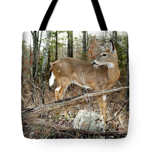 Beloved Tzav Tote Bag by Bill Stephens