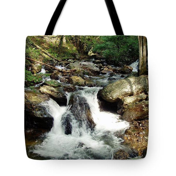 Below Anna Ruby Falls Tote Bag