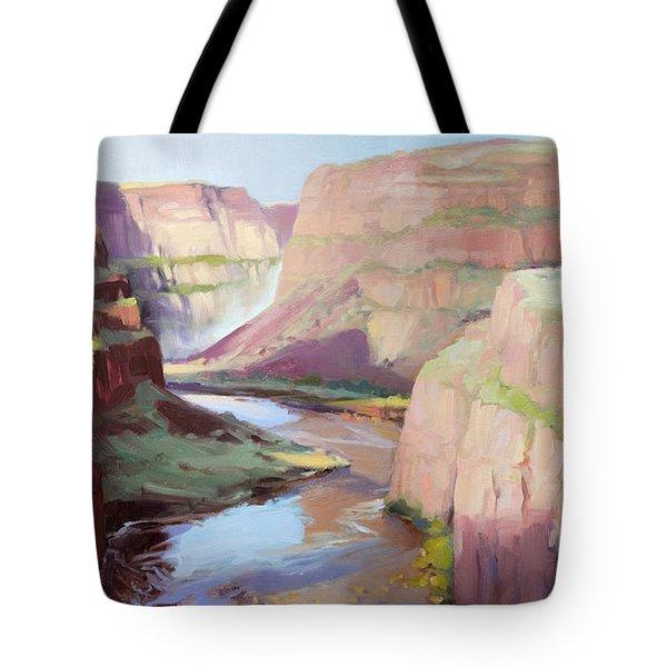 Below Palouse Falls Tote Bag