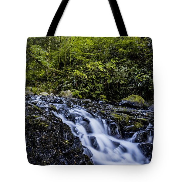 Below Pony Tail Falls Tote Bag