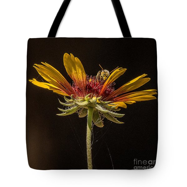 Below The Bee's Knees Tote Bag