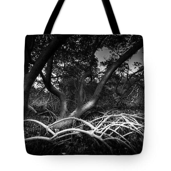 Below The Canopy Tote Bag