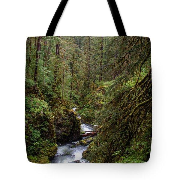 Below The Falls Tote Bag