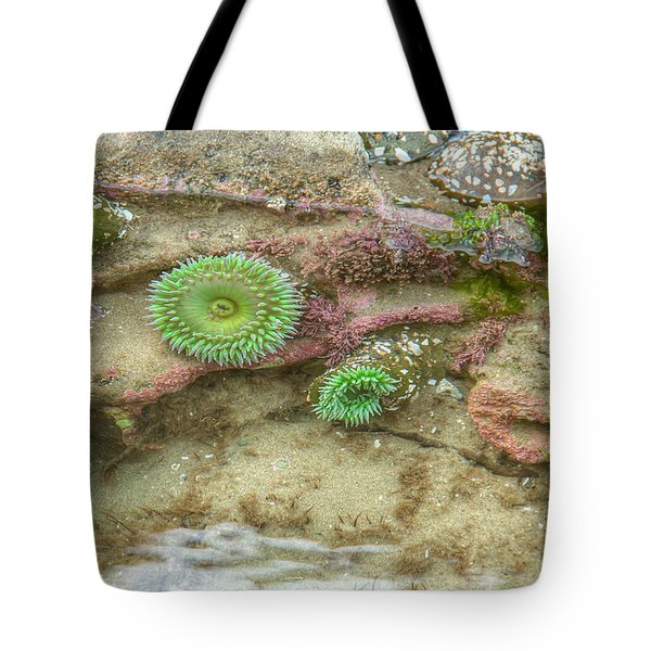 Below The Surface Tote Bag by Kristina Rinell