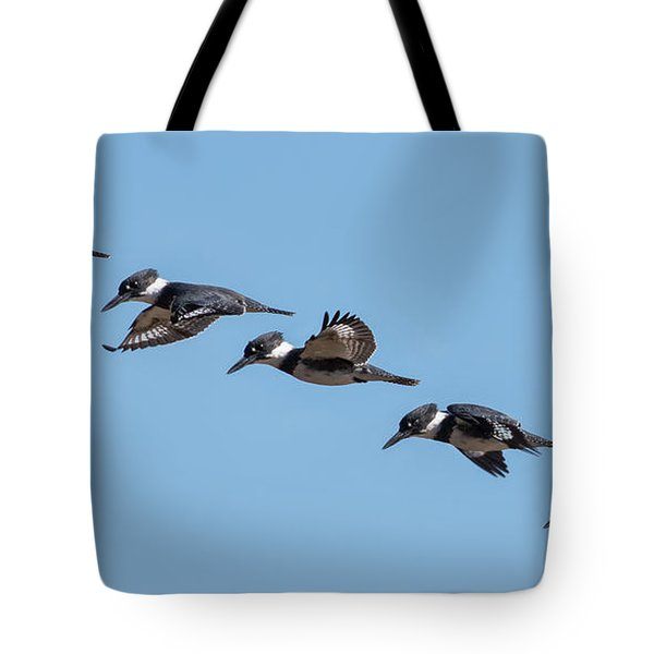 Belted Kingfisher Flight Study Tote Bag