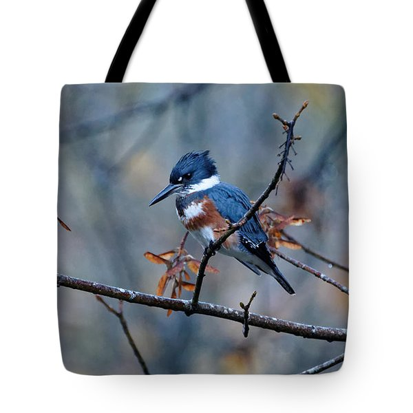 Belted Kingfisher Perch Tote Bag