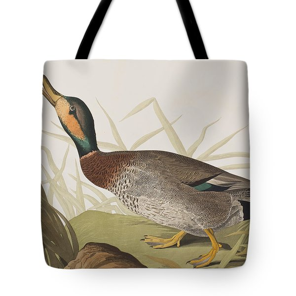 Bemaculated Duck Tote Bag by John James Audubon