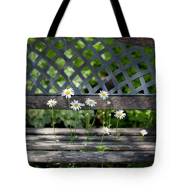 Tote Bag featuring the photograph Benched by Aaron Aldrich