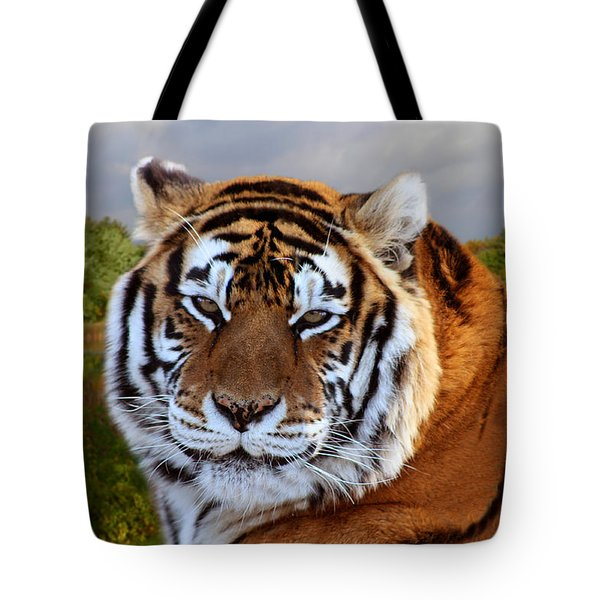 Bengal Tiger Portrait Tote Bag