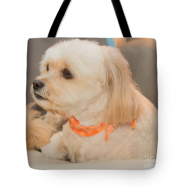 Benji On The Look Out Tote Bag