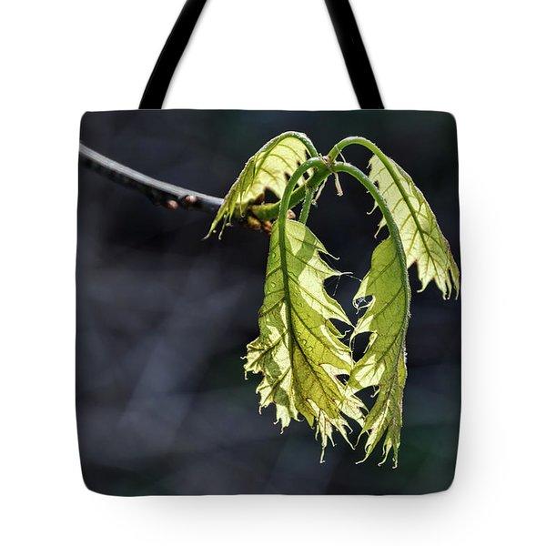 Bent On Growing - Tote Bag