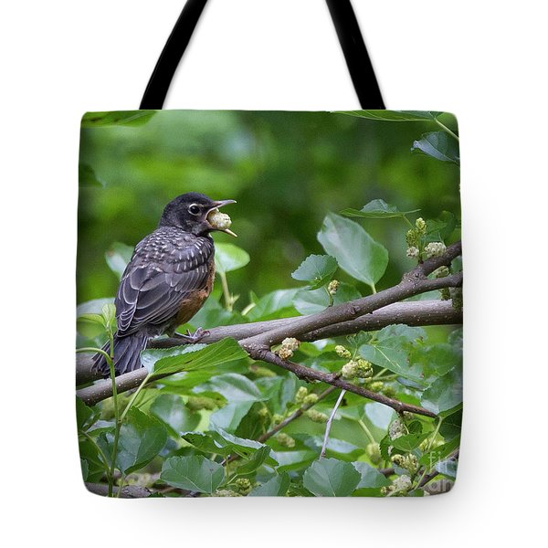 Tote Bag featuring the photograph Berry Good by Chris Scroggins