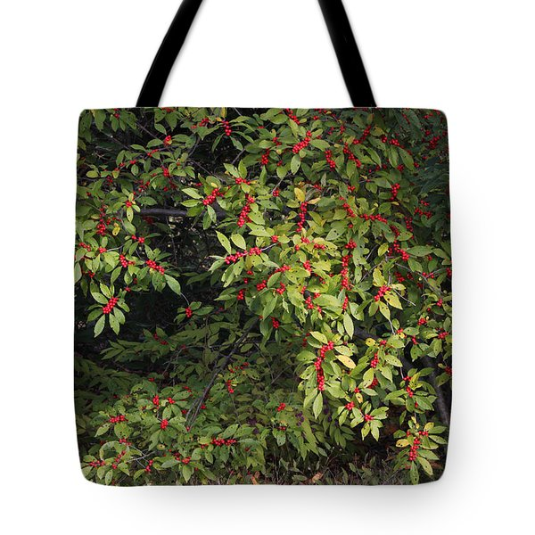 Tote Bag featuring the photograph Berry Spread by Deborah  Crew-Johnson