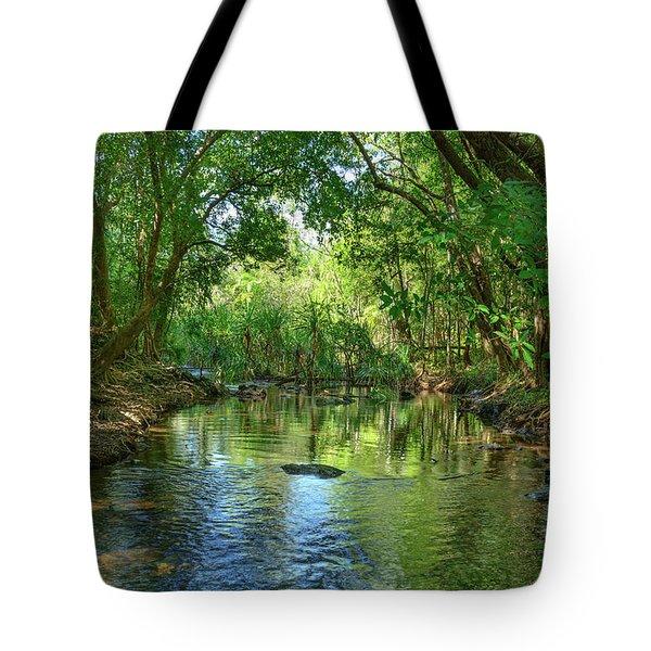 Berry Springs Tote Bag