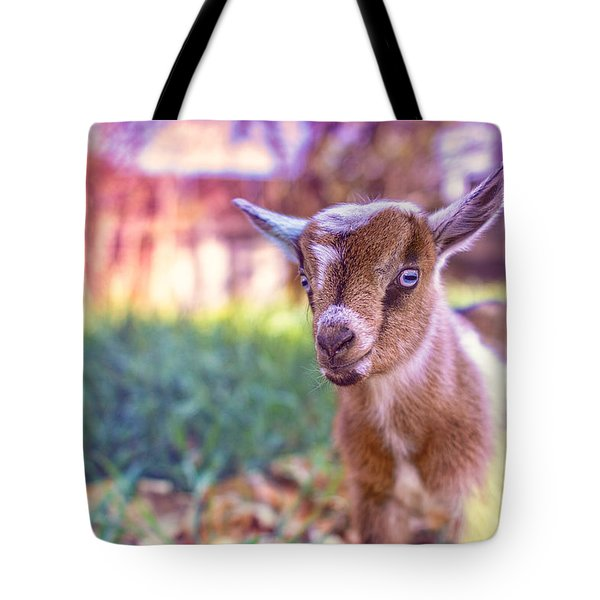 Tote Bag featuring the photograph Bert by TC Morgan
