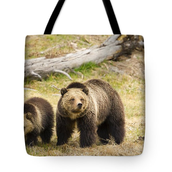 Tote Bag featuring the photograph Beryl by Aaron Whittemore