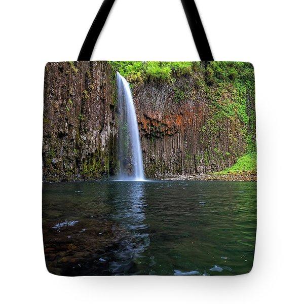 Beside Abiqua Falls In Summer Tote Bag by David Gn