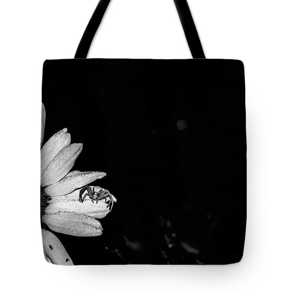 Beside Her Tote Bag