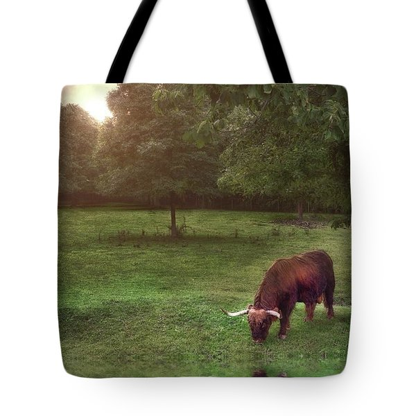 Tote Bag featuring the photograph Beside Still Waters by Mark Fuller