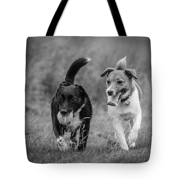 Tote Bag featuring the photograph Best Buddies by Nick Bywater