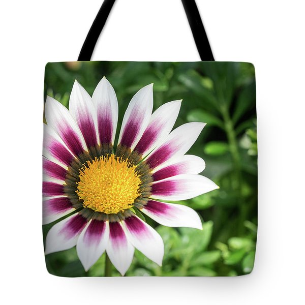 Best Face Forward Tote Bag