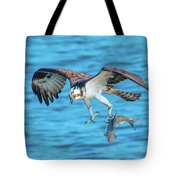 Best Osprey With Fish In One Talon Tote Bag by Jeff at JSJ Photography