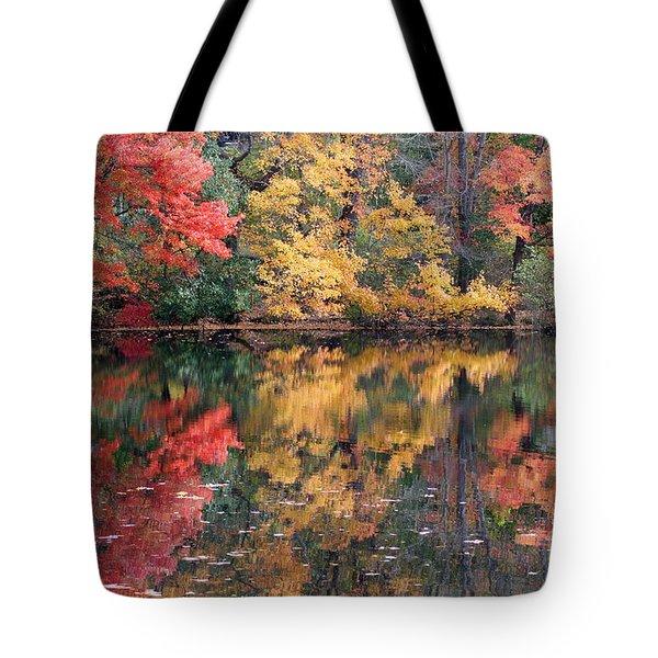 Betty Allen's Vibrant Colors Tote Bag