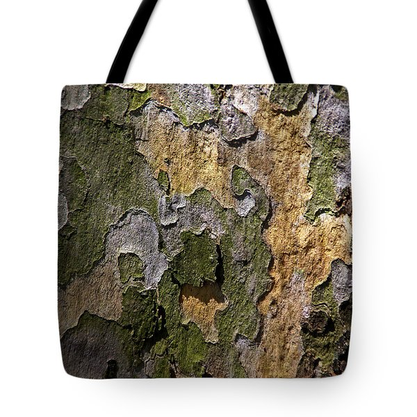 Tote Bag featuring the photograph Between Light And Shadow by Lynda Lehmann