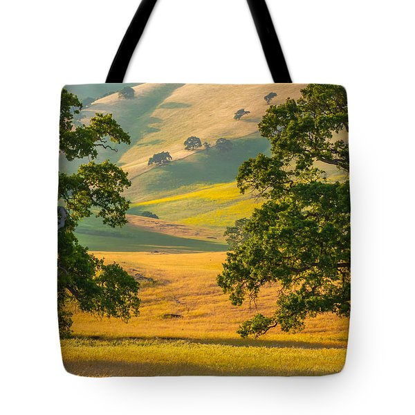 Between Two Trees Tote Bag by Marc Crumpler