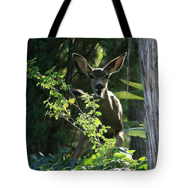 Beverly Hills Deer Tote Bag by Marna Edwards Flavell
