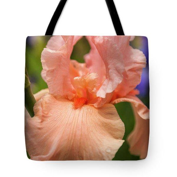 Beverly Sills Iris, 2 Tote Bag