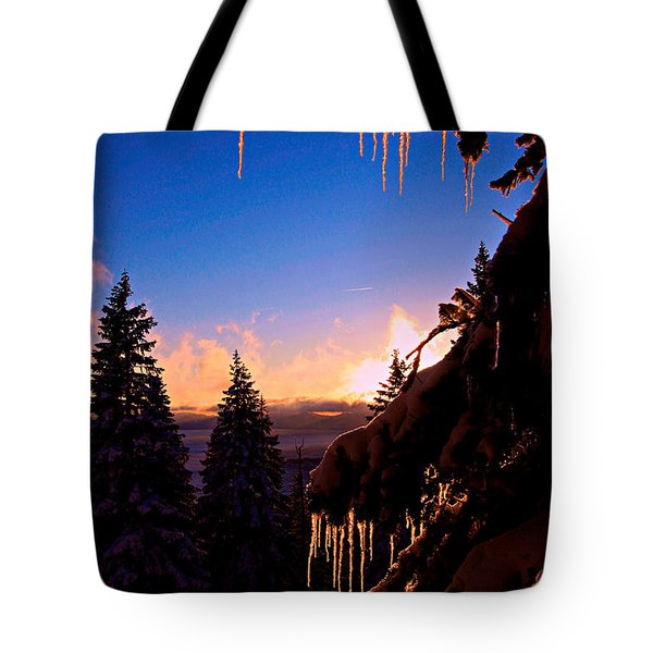 Beware Of My Claws Tote Bag by Sean Sarsfield