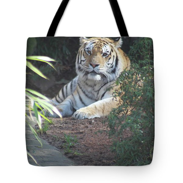 Tote Bag featuring the photograph Beyond The Branches by Laddie Halupa