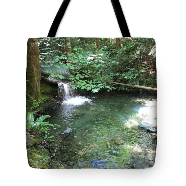 Tote Bag featuring the photograph Beyond The End Of The Trail At Limpy Creek by Marie Neder