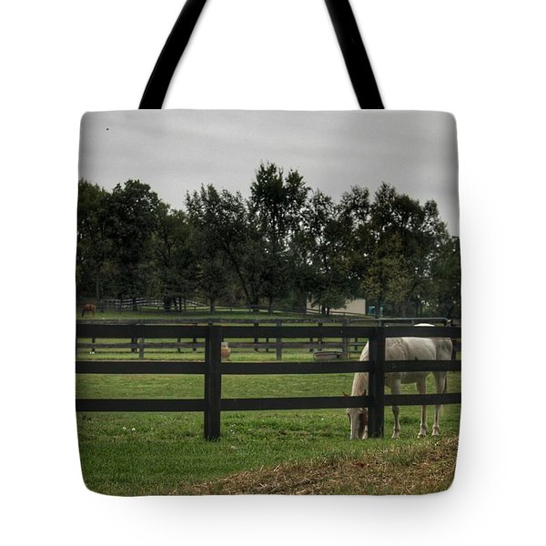 1004 - Beyond The Fence White Horse Tote Bag