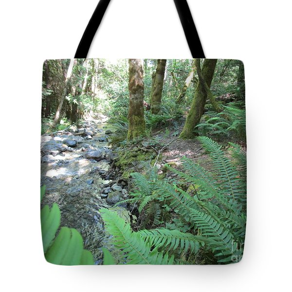 Tote Bag featuring the photograph Beyond The Ferns by Marie Neder