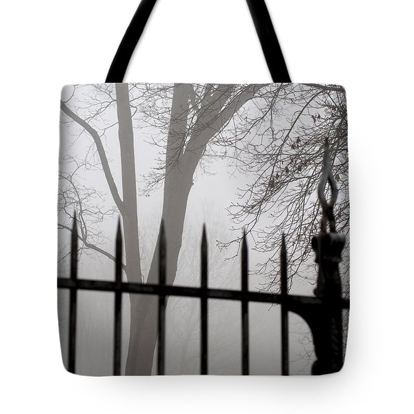 Beyond The Pale Tote Bag