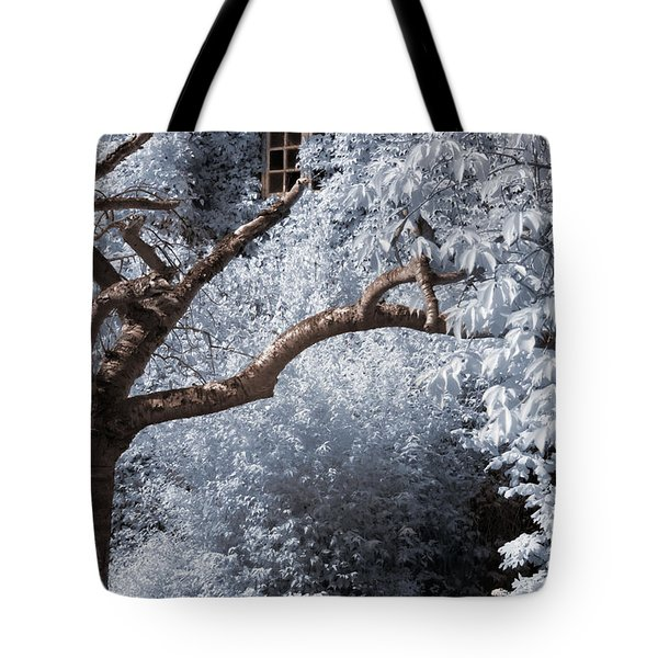 Tote Bag featuring the photograph Beyond The Silver Tunnel by Helga Novelli