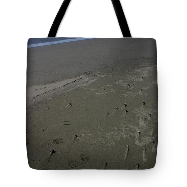 Beyond Windswept Tote Bag