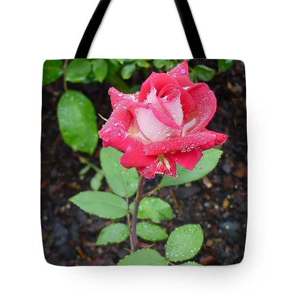 Bi-colored Rose In Rain Tote Bag