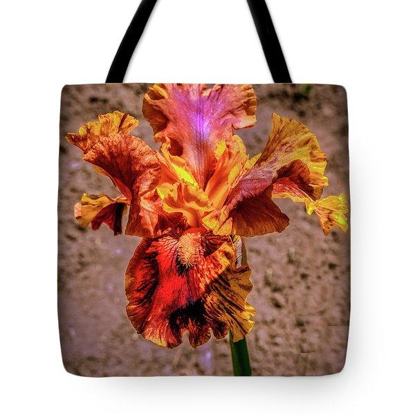 Bicolor Beauty Tote Bag by Robert Bales