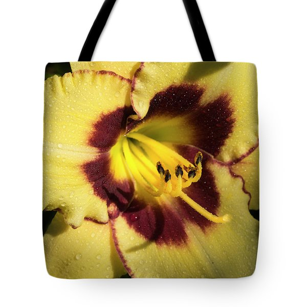 Tote Bag featuring the photograph Bicolored Lily by Jean Noren