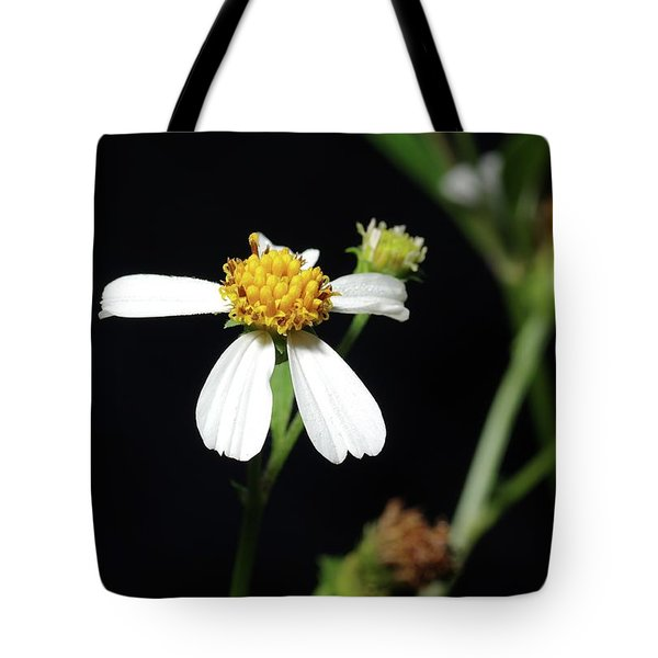 Tote Bag featuring the photograph Bidens Alba by Richard Rizzo