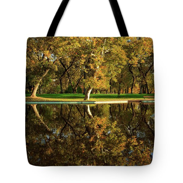 Bidwell Park Reflections Tote Bag