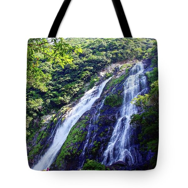 Big And Beautiful Waterfall Tote Bag