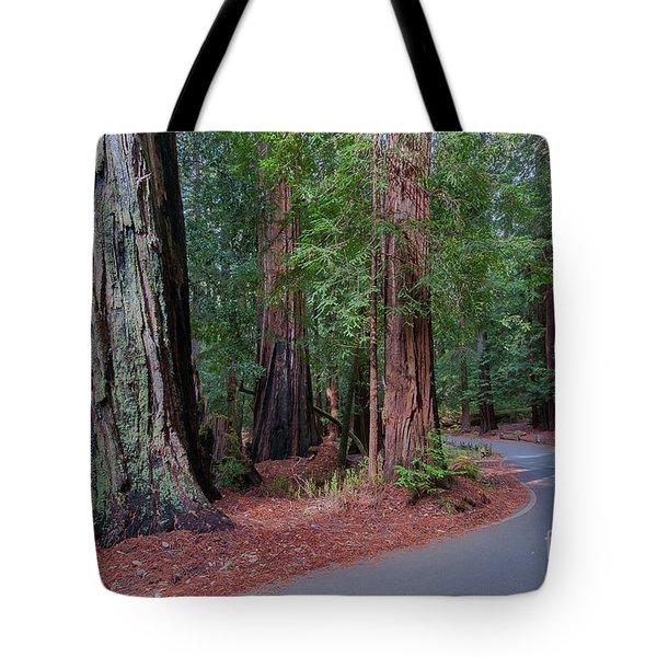 Big Basin Redwoods Tote Bag