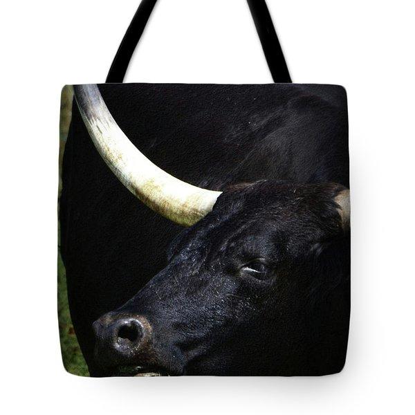 Big Blackie Tote Bag by Nadalyn Larsen