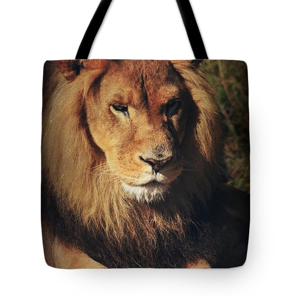 Big Boy Tote Bag by Laurie Search