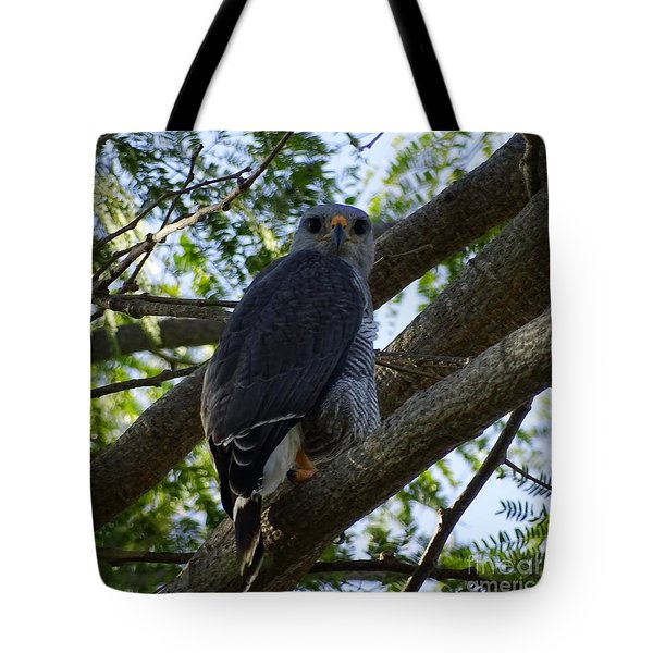 Tote Bag featuring the photograph Big Brother Watching  by Cindy Charles Ouellette